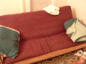 Jeremy and wes's futon